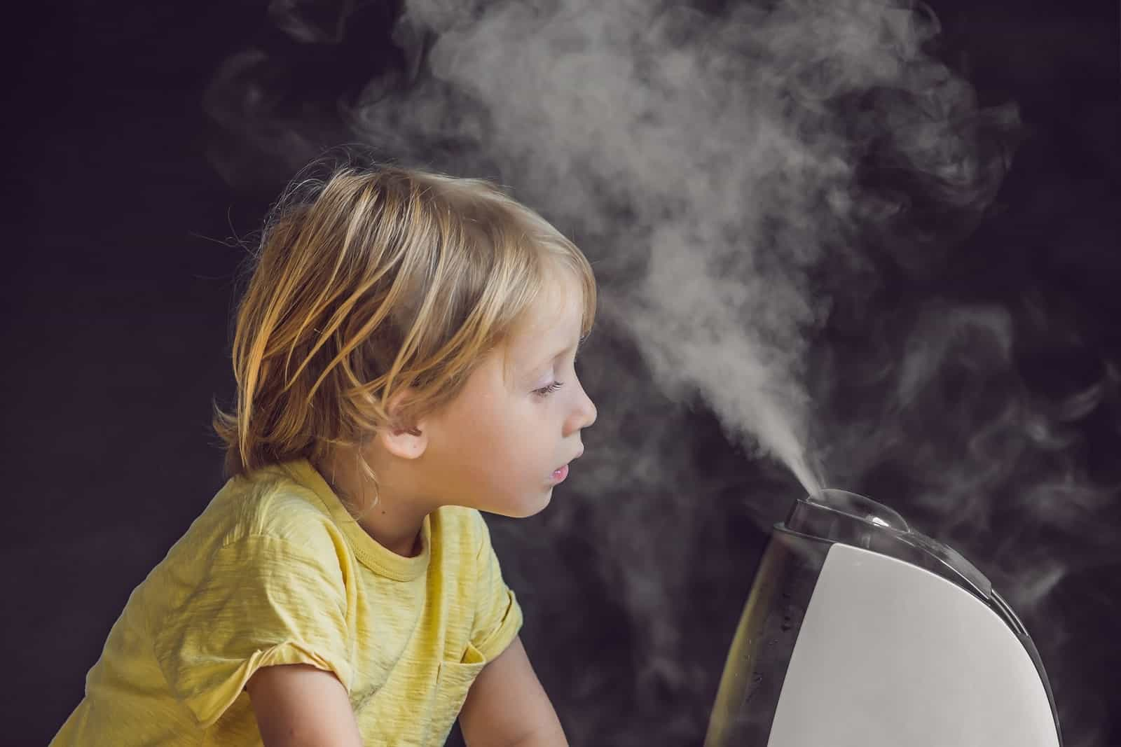Does a humidifier help with pneumonia?