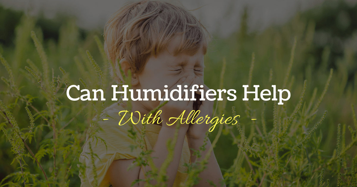 The Question Is: Can Humidifiers Help With Allergies?