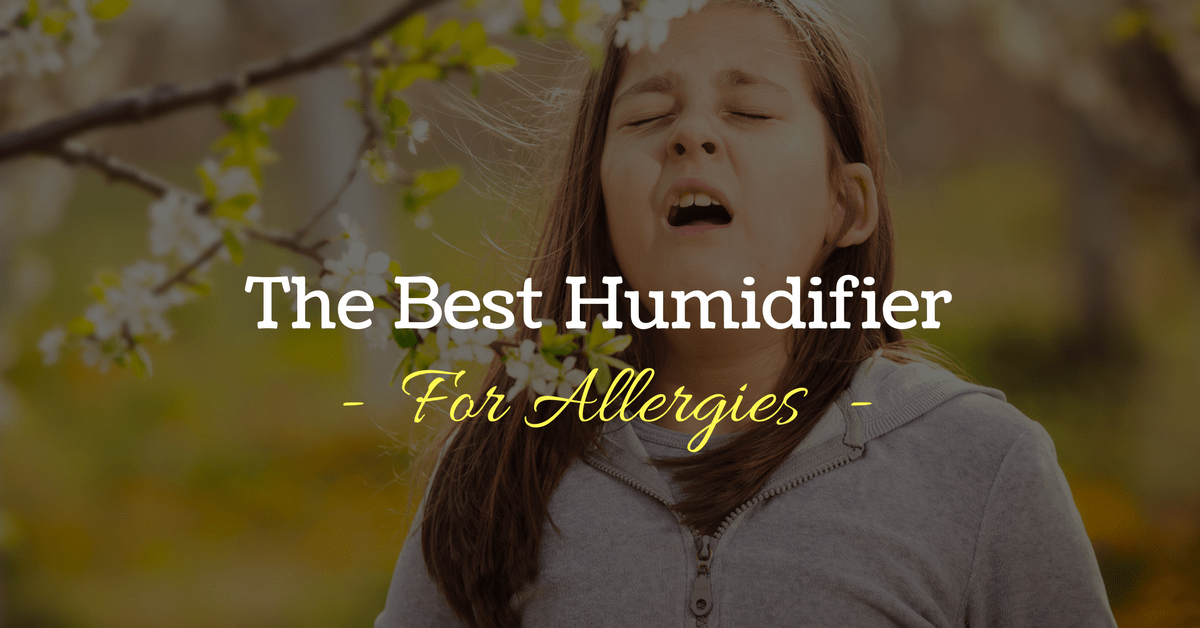 The Best Humidifier For Allergies – Reviews and Top Picks