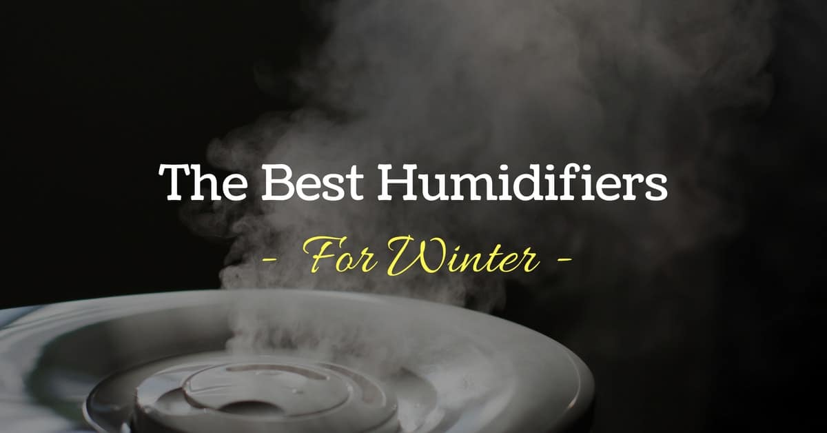 Snag One Now: Five Best Humidifiers for Winter in 2018