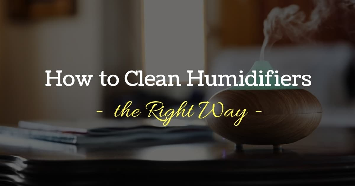 How to Clean Your Humidifier (in 7 Super Easy Steps)