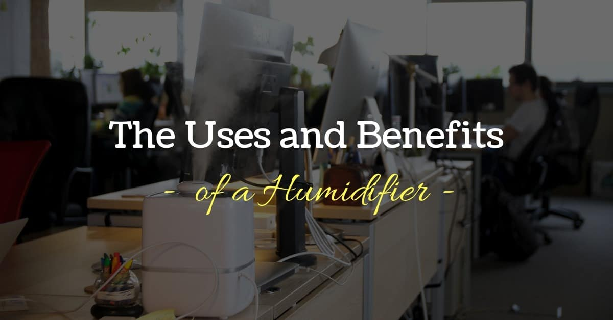 The Many Uses and Benefits of a Humidifier