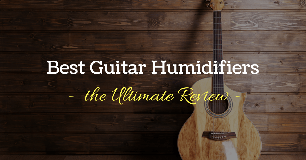 The Top 5 Best Guitar Humidifier Reviews & Guide